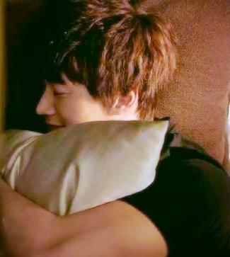 JH-pillow